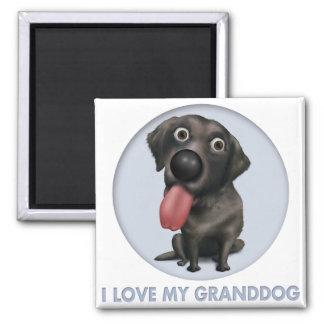 Labrador Retriever (Black) Granddog Magnet