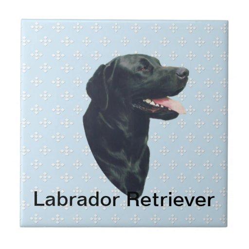 Labrador Retriever ~ Blue w/ White Diamonds Ceramic Tiles