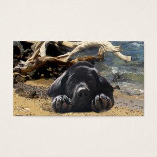 Labrador Retriever Breeder Business Card