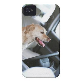 Labrador retriever Case-Mate iPhone 4 cases