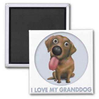 Labrador Retriever Chocolate Granddog Magnets