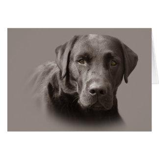 Labrador Retriever Chocolate Greeting Card