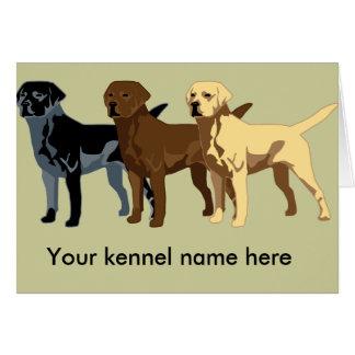 Labrador Retriever colours Greeting Card