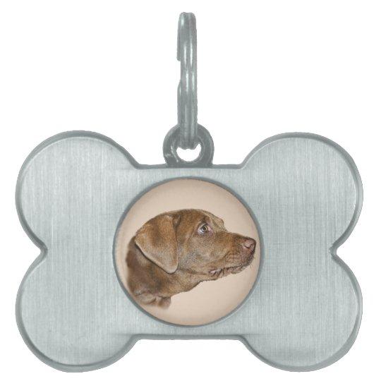 Labrador Retriever Customisable Dog Tag