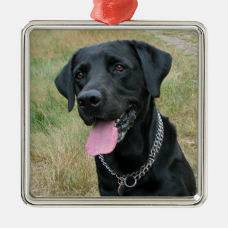 Labrador Retriever dog black ornament, gift idea Christmas Ornament