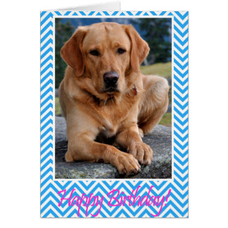 Labrador Retriever Dog Happy Birthday Blue Card