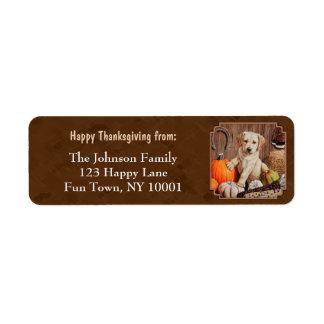 Labrador Retriever Dog & Pumpkins Brown
