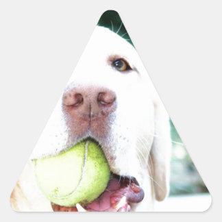 Labrador Retriever Dog Tennis Ball Triangle Sticker