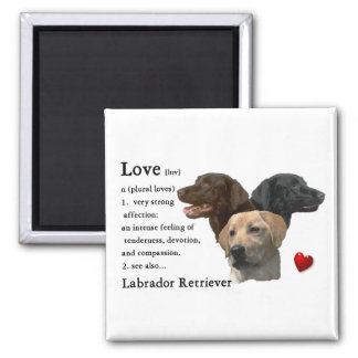 Labrador Retriever Gifts Square Magnet