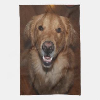 Labrador retriever hand towel