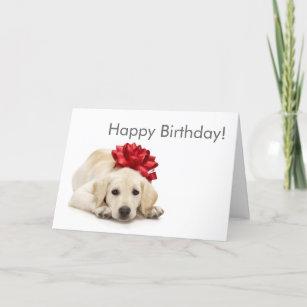 Labrador Retriever Happy Birthday Card
