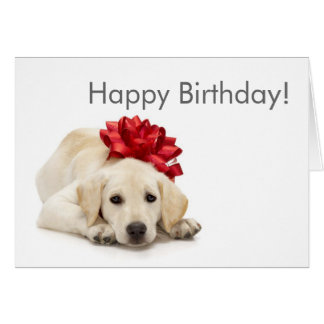 Labrador Retriever Happy Birthday Card