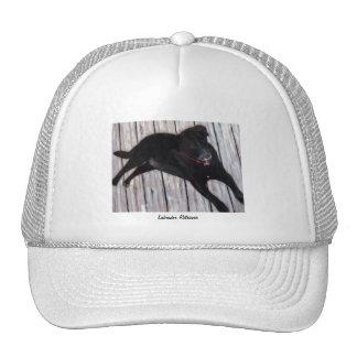 Labrador Retriever Mesh Hats