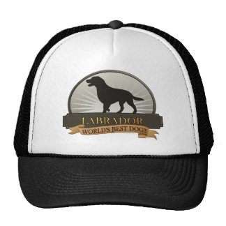 Labrador Retriever Hats