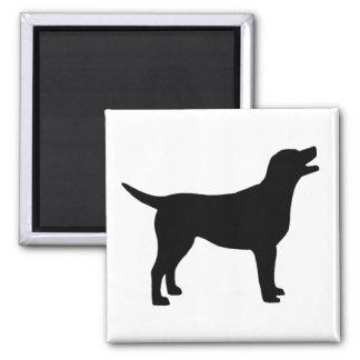 Labrador Retriever (in black) Magnet