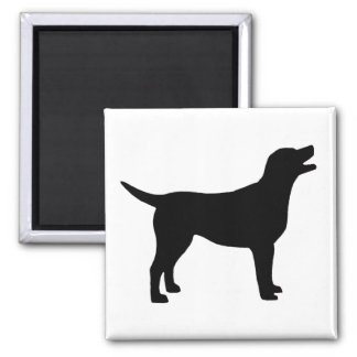 Labrador Retriever (in black) Square Magnet