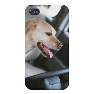 Labrador retriever iPhone 4/4S case