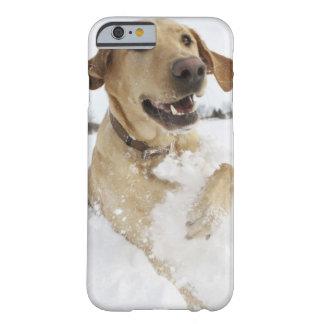 Labrador retriever jumping through deep snow barely there iPhone 6 case