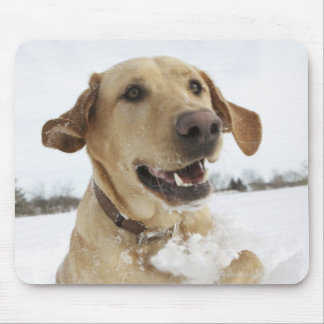Labrador retriever jumping through deep snow mouse pad