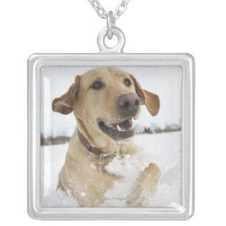 Labrador retriever jumping through deep snow pendants