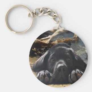 Labrador Retriever Keychain Beach