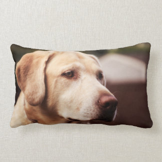 Labrador Retriever Lumbar Cushion