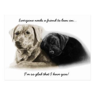 Labrador Retriever Postcards For Friends
