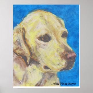 Labrador Retriever Poster