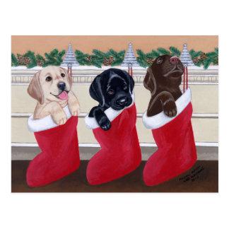 Labrador Retriever Puppies Christmas Post Cards