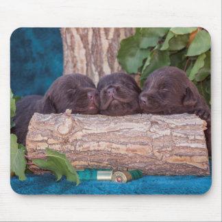 Labrador Retriever Puppies Mouse Mat