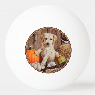Labrador Retriever Puppy and Pumpkins Ping Pong Ball