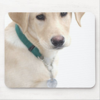 Labrador Retriever Puppy, MR) Mouse Mat