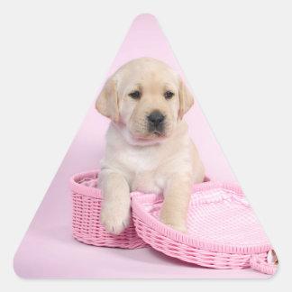 Labrador retriever puppy on pink background triangle sticker