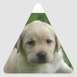 Labrador Retriever Puppy Products and Gifts Triangle Sticker