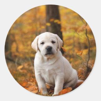 Labrador retriever puppy round sticker