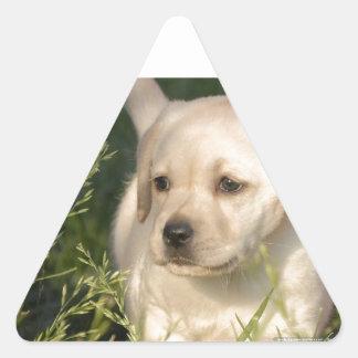 Labrador Retriever Puppy Triangle Sticker