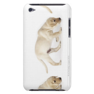 Labrador Retriever Puppy walking iPod Touch Case-Mate Case