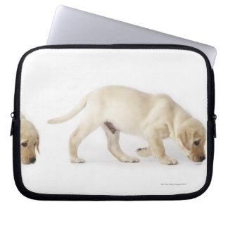 Labrador Retriever Puppy walking Laptop Sleeve