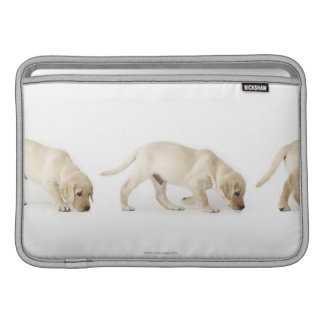 Labrador Retriever Puppy Walking MacBook Sleeve