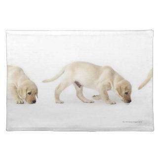 Labrador Retriever Puppy walking Placemat