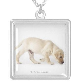 Labrador Retriever Puppy Walking Silver Plated Necklace
