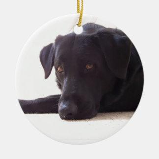 labrador retriever round ceramic decoration