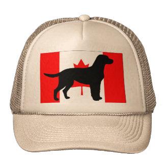 labrador retriever silo Canadian-Flag.png Cap