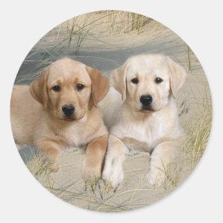 Labrador Retriever Sticker Pups On Beach