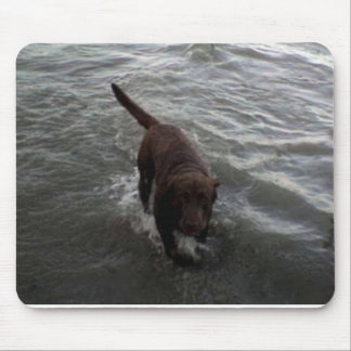Labrador Retriever swimming Mouse Mat