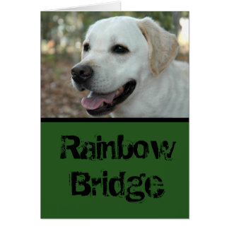 Labrador Retriever sympathy card3 Card