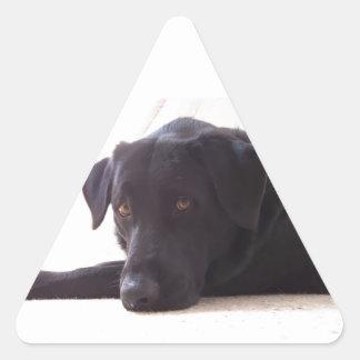 labrador retriever triangle sticker