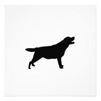 Labrador Retriver hunting dog Silhouette Photo