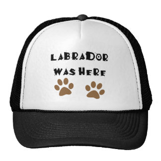 Labrador Was Here Hats