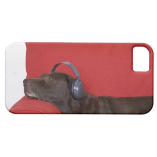 Labrador wearing headphones lying on sofa case for the iPhone 5